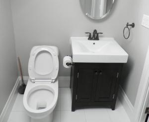 Bathroom Renovation 5